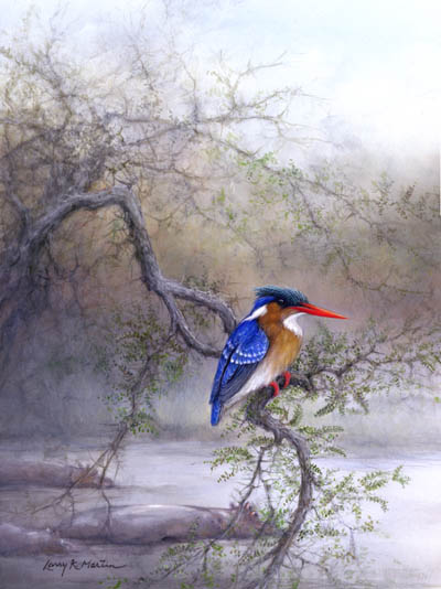 malachite kingfisher by American wildlife artist Larry K. Martin