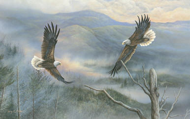 """Smoky Mtn Courtship"" Bald Eagle"
