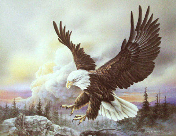 """Spacious Skies I"" Bald Eagle from America the Beautiful Series"